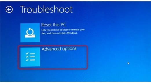 select advanced options in troubleshoot window