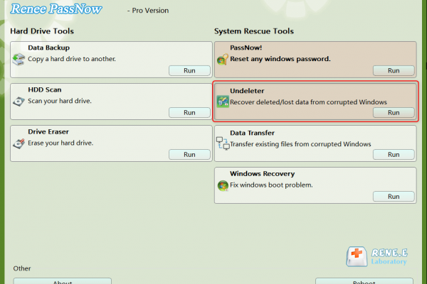 data recovery function in Renee Passnow