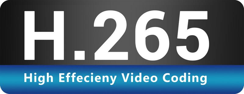 295_H.265_HEVC_logo