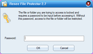 type password to unlock or lock the files in Renee File Protector