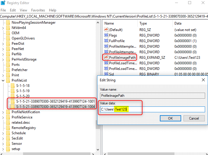 confirm user account profile in Registry Editor