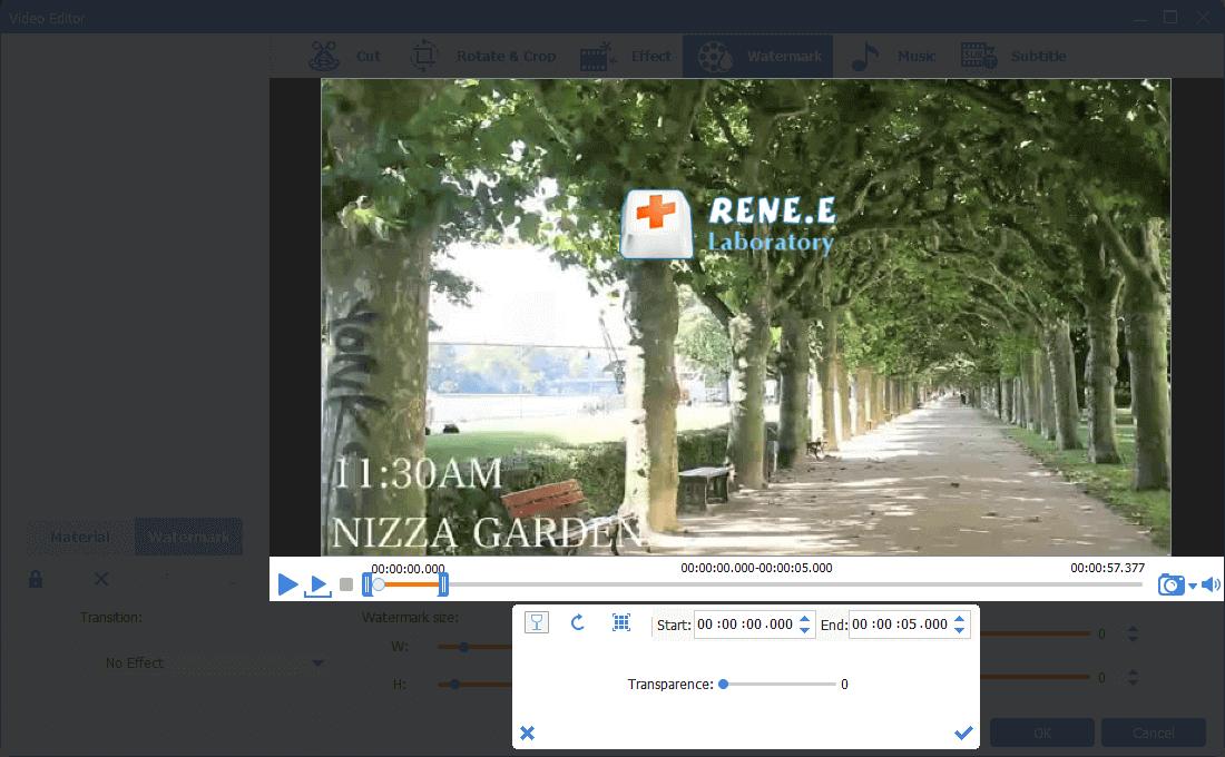 add image as the watermark in renee video editor