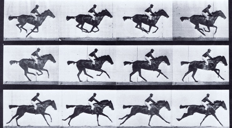 frame number of recording horse riding