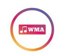 convert from wma to mp3