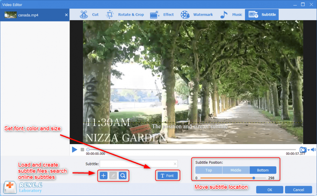 create and load subtitles in renee video editor pro