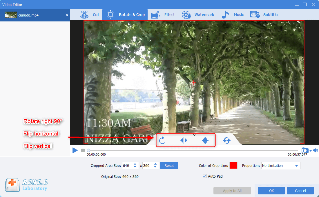 use renee video editor pro to change the video screen display