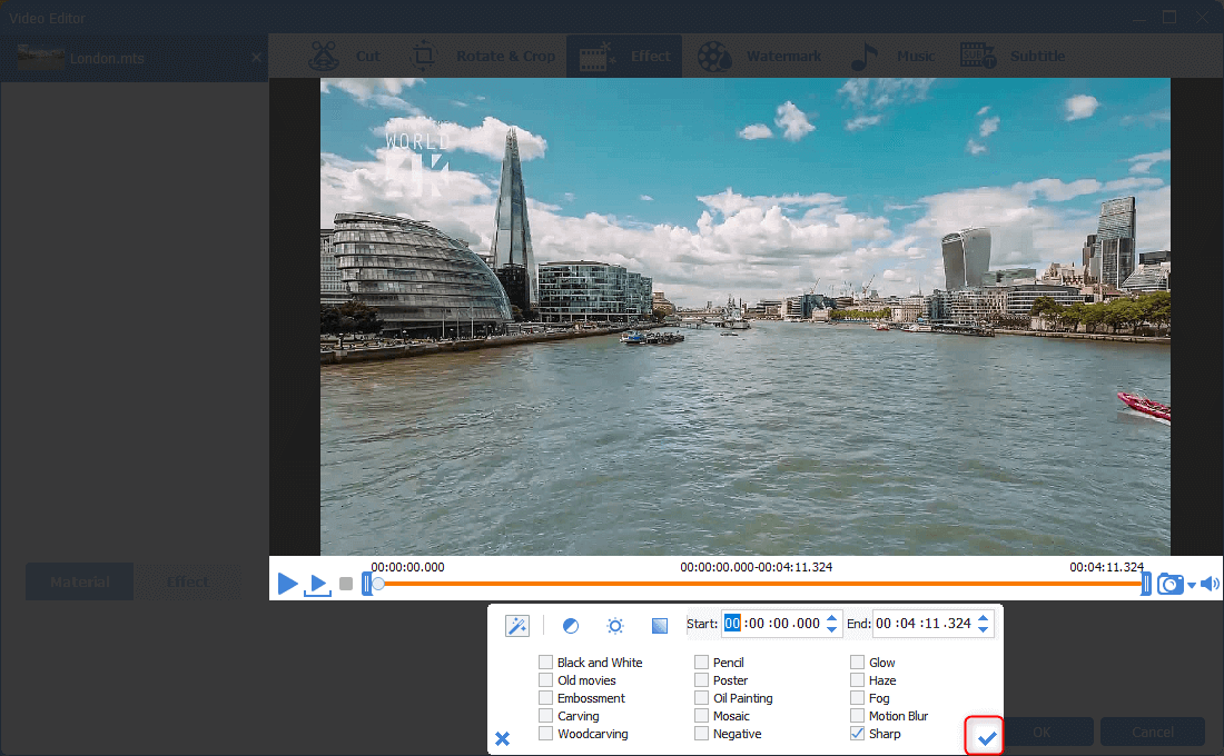 confirm video effects in renee video editor pro