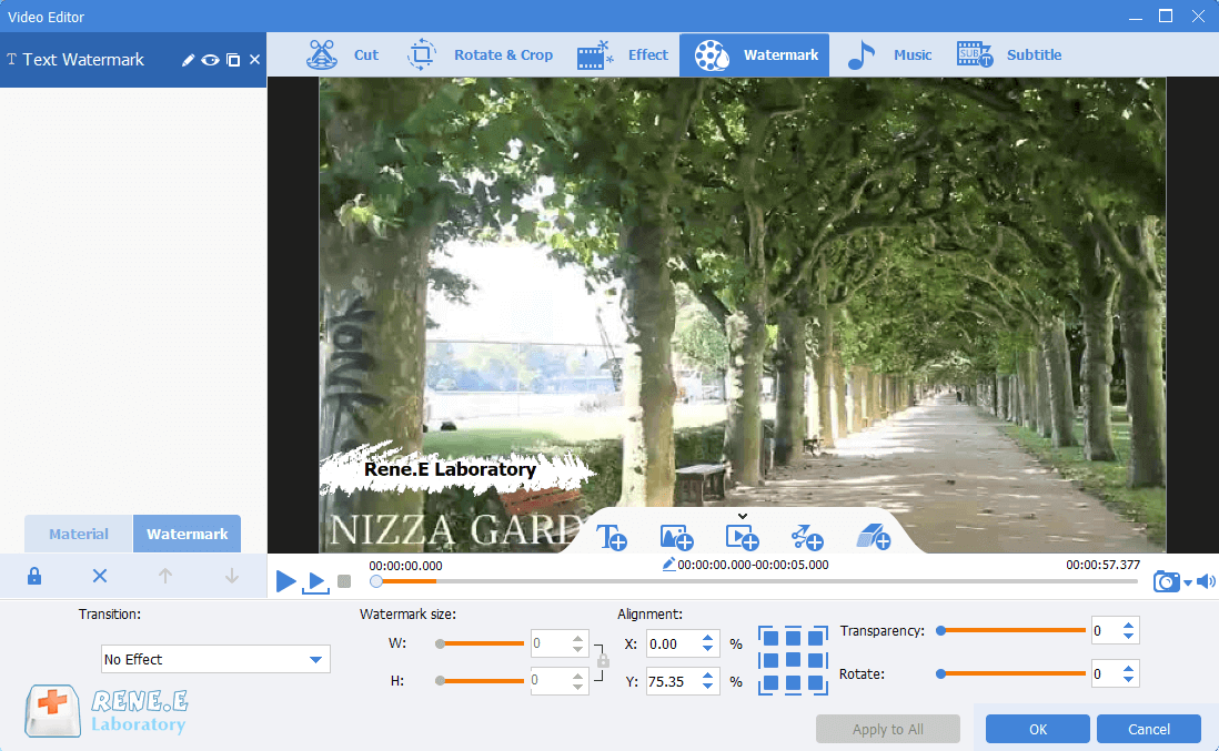 move the text watermark to the specific position in renee video editor pro