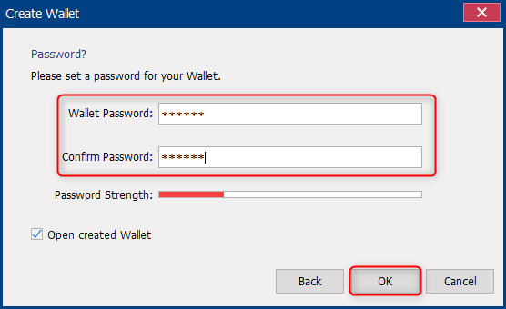 set and confirm password for the wallet in renee secure silo