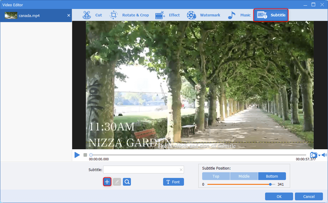 add subtitles in renee video editor pro