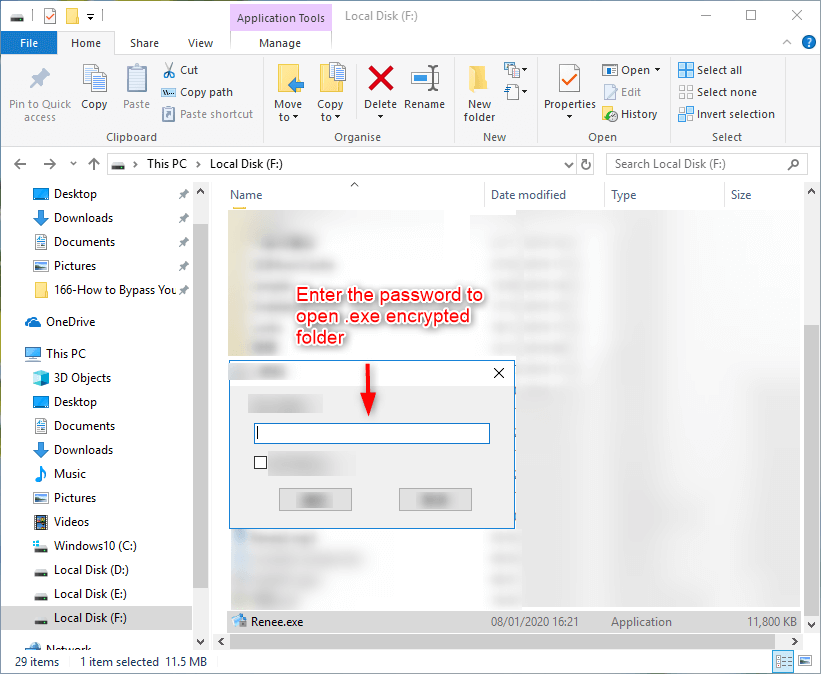 enter the correct password to open exe in renee file protector