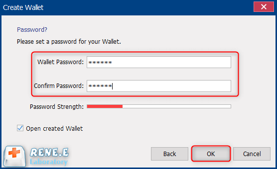 set password for the wallet