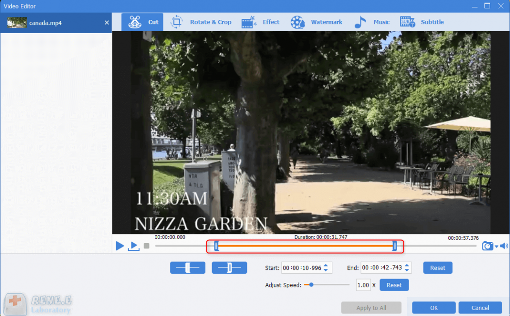 cut video with renee video editor pro