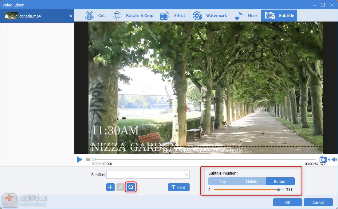 adjust subtitle styles in renee videp editor pro