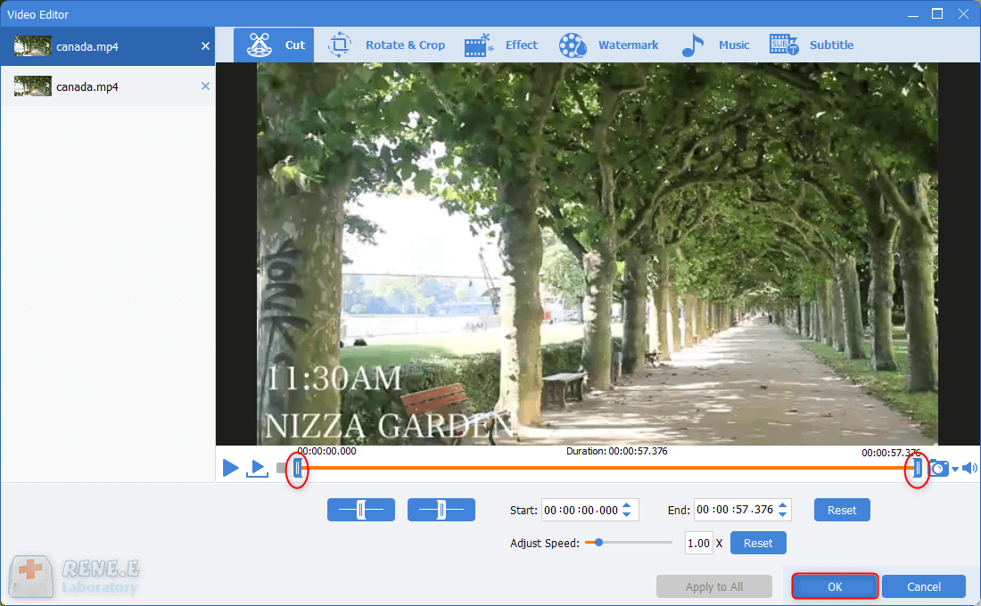 cut clips out of videos in renee video editor pro