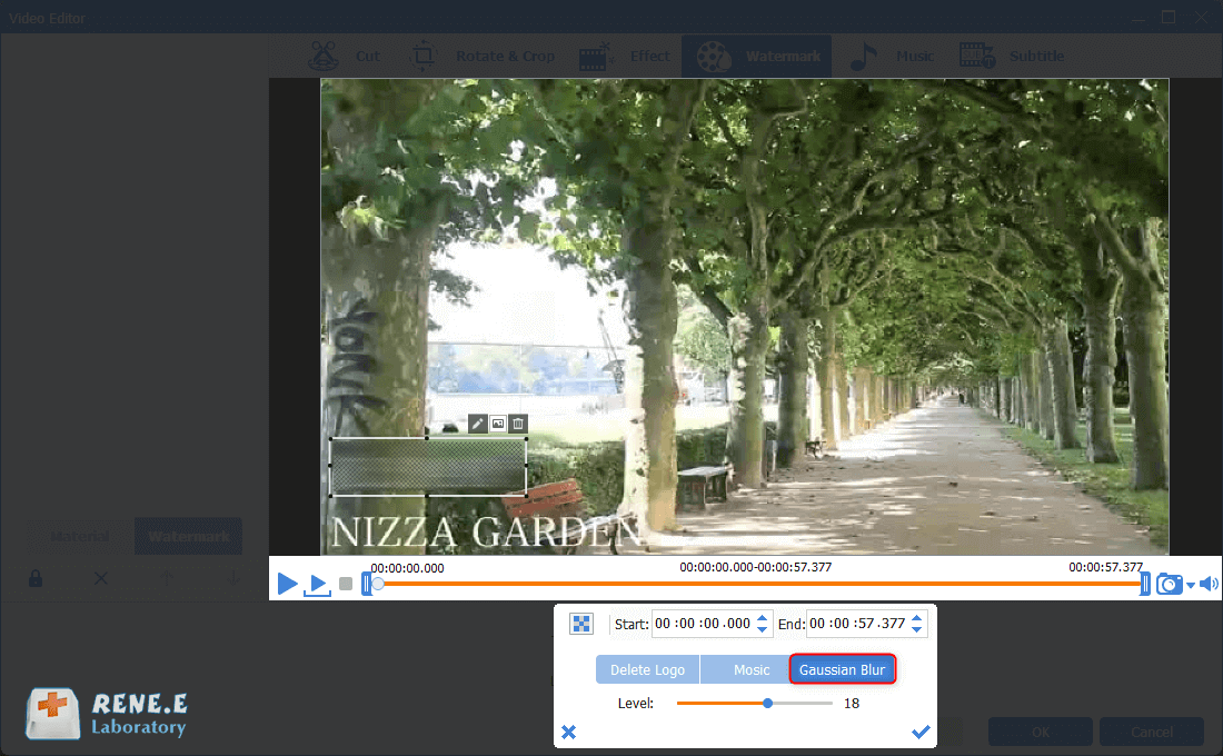 remove watermark from video with gaussian blur