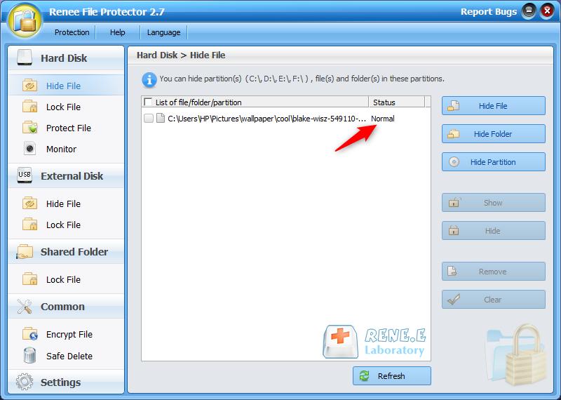 show the hidden files in renee file protector