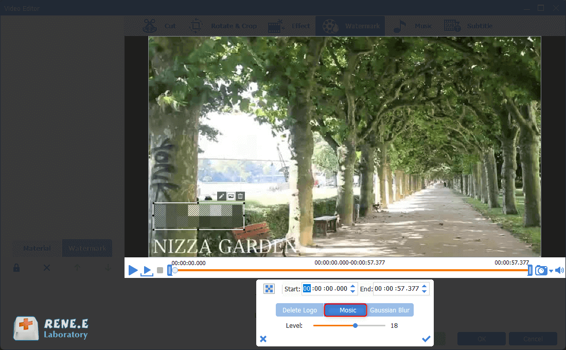 remove watermark from video with mosaic within renee video editor pro