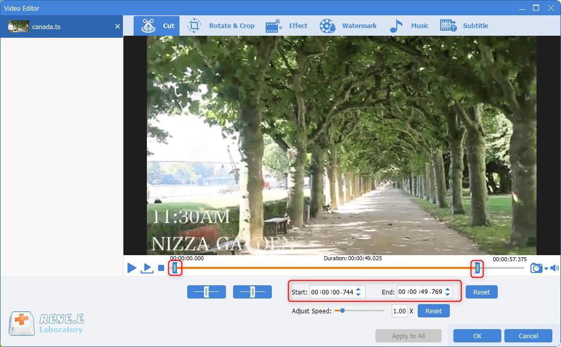 cut ts files in renee video editor pro