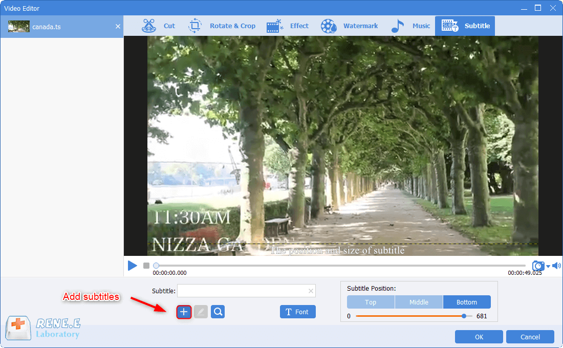 add subtitles to ts files in renee video editor pro