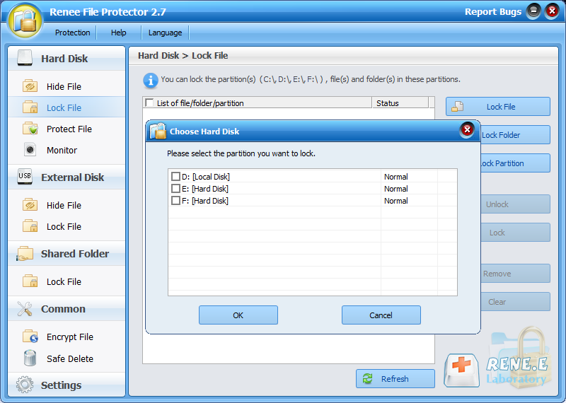 lock partition with renee file protector