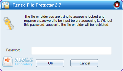 enter password to unlock the file renee file protector